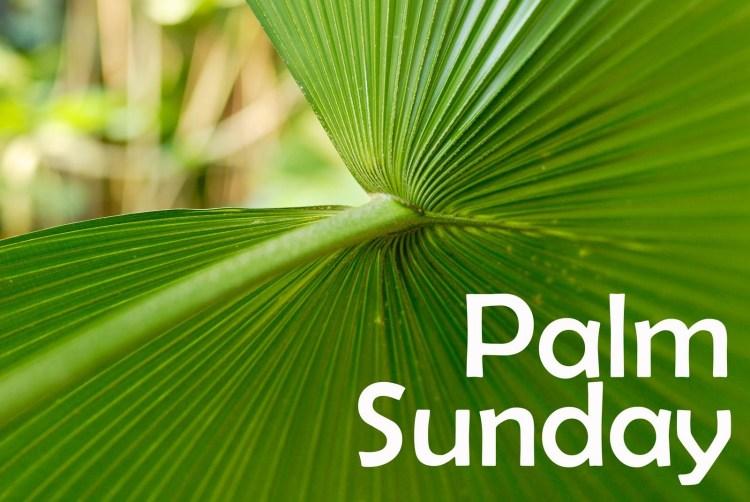 palm-sunday-leaves-3