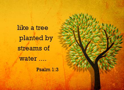 tree-waters