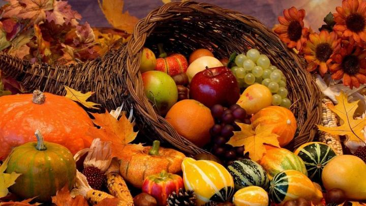 autumn-harvest-wallpaper-widescreen-wallpaper-4